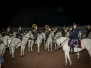 Concerto Polizia a cavallo 2016